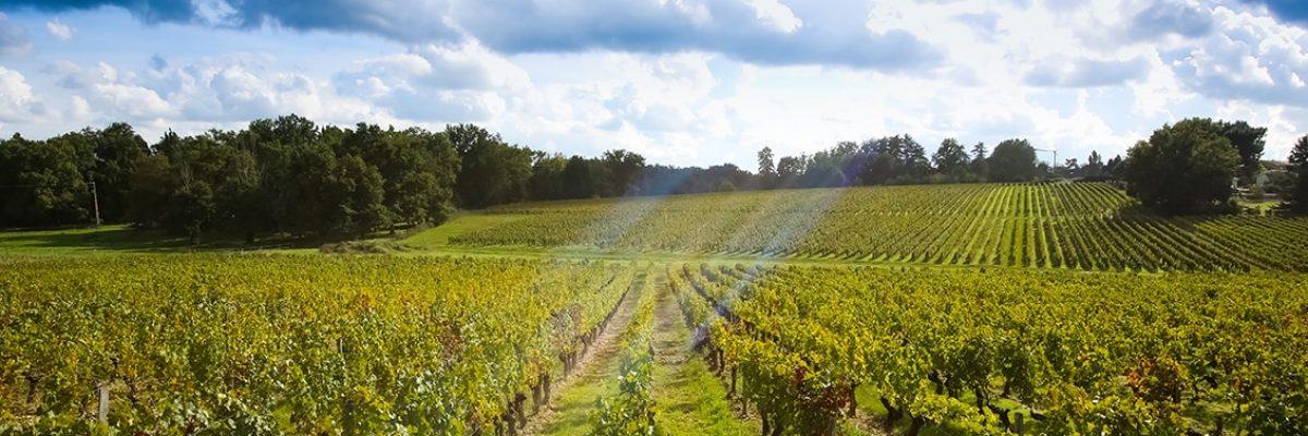 route-des-vins-sud-gironde